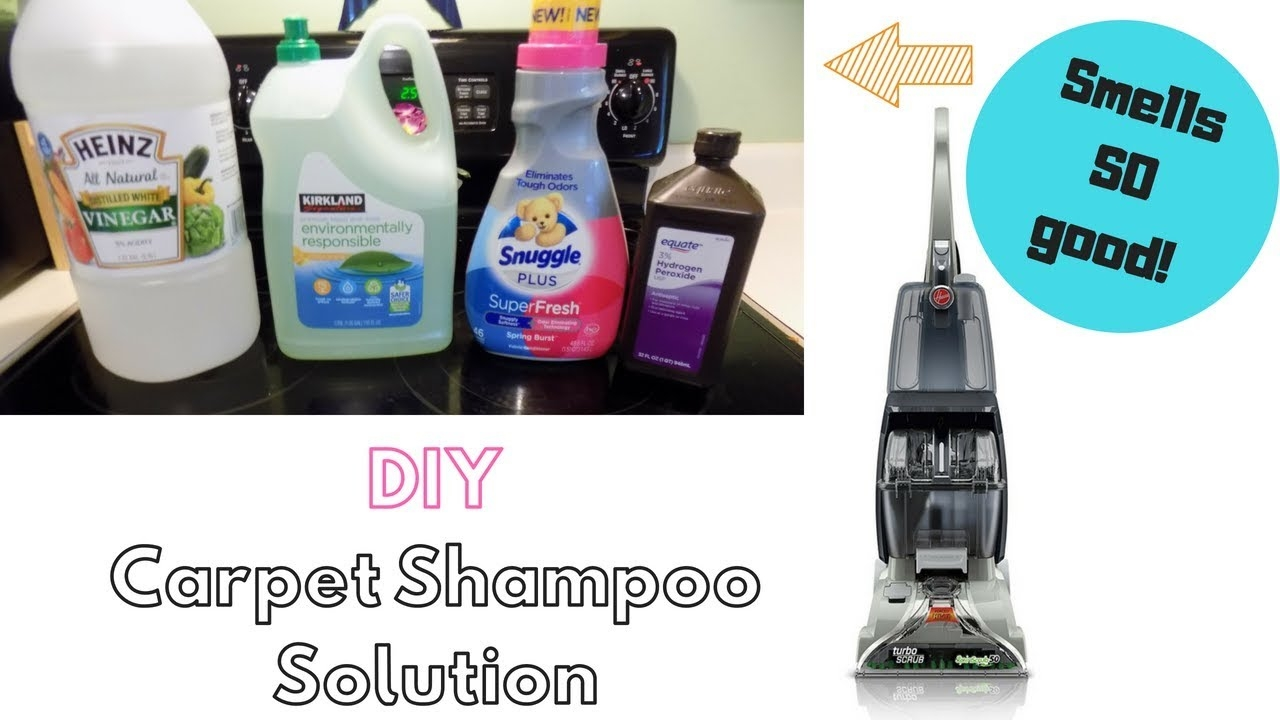 7 Images Homemade Carpet Cleaning Solution For Hoover And ...